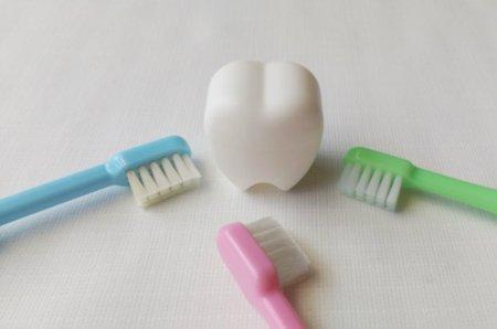 赤ちゃん用の歯ブラシ6選!6才から始められる歯磨きデビューに最適 ...